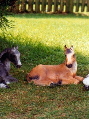 Statue de jardin de cheval assis