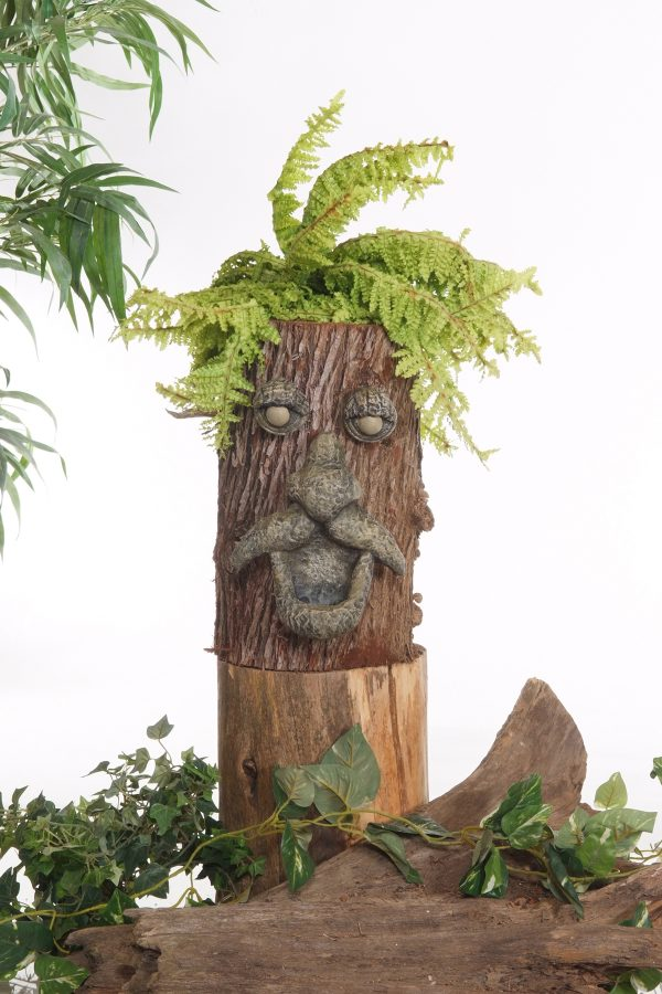 Pot face d'arbre