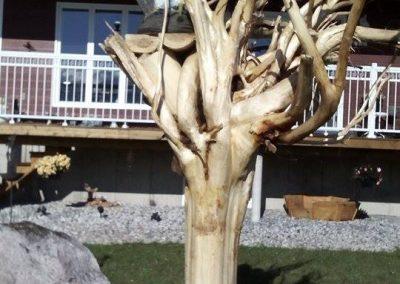 Sculpture d'aig