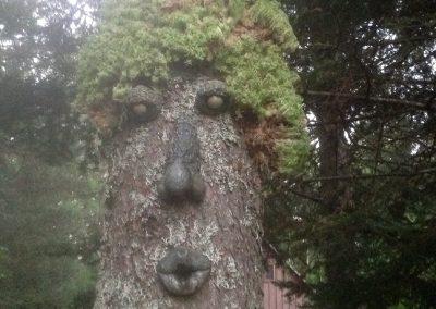 Visage d'arbre avec cheveux